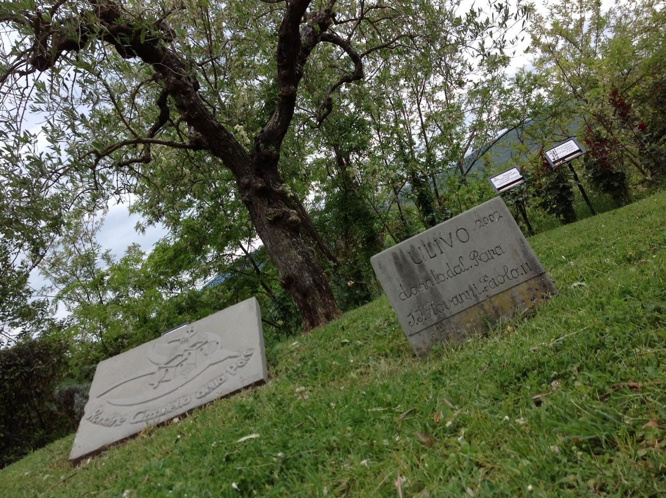 Rondine tra La Verna, Giovanni Paolo II e Benedetto XVI